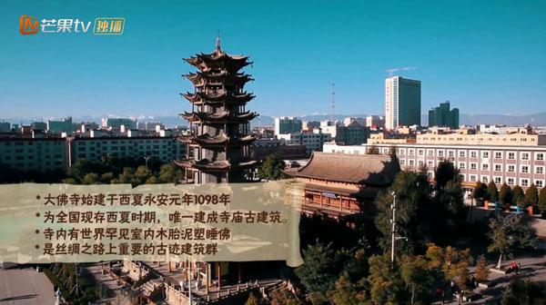 从大佛寺到山丹军马场在那遥远的地方带你见证张掖的千年传承